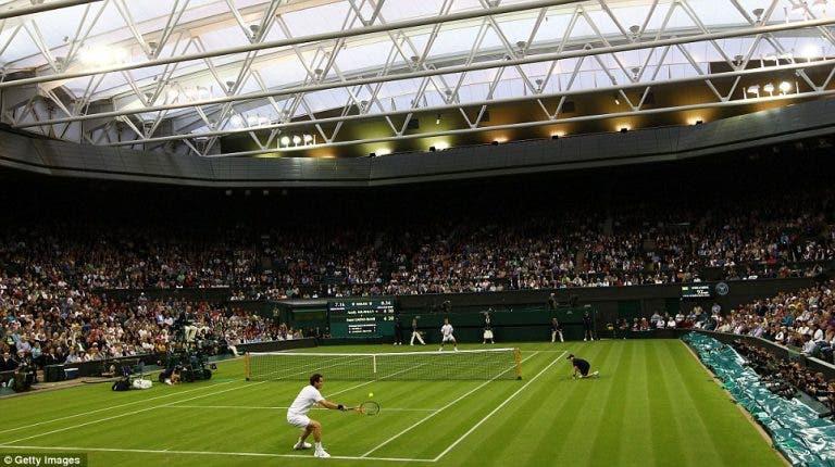 Wimbledon pondera o uso de relva artificial