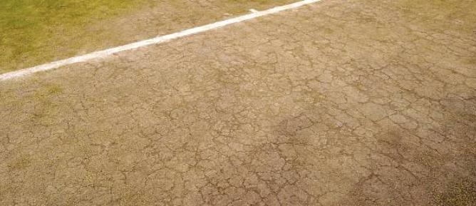 Wimbledon pensa em colocar relva artificial no All England Club