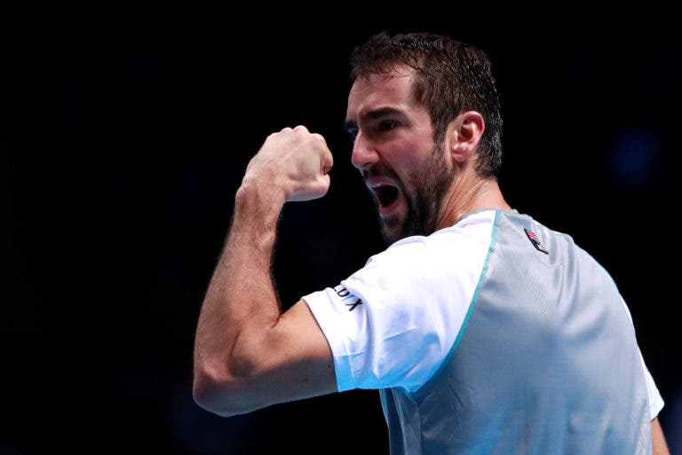 Cilic confiante: «O Djokovic está a jogar de forma fenomenal mas quero vencer»