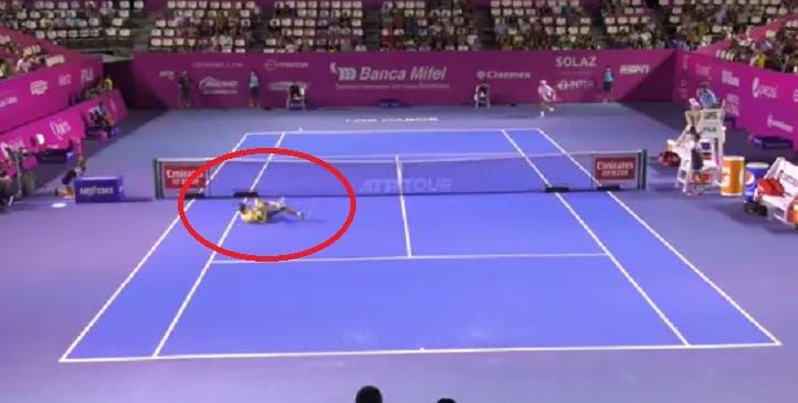 [VÍDEO] Dimitrov levou o público ao rubro… com este ponto