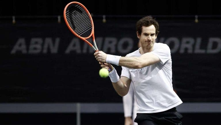 Andy Murray e Alcaraz lideram lista de wildcards para Miami