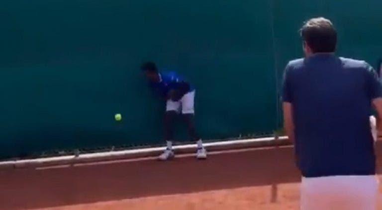 [VÍDEO] Monfils faz desafio e Federer acerta-lhe onde dói mais… com Svitolina a ver!